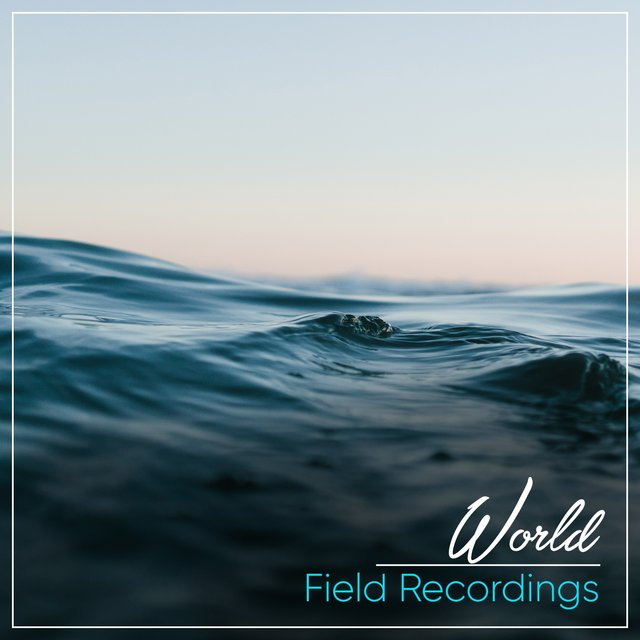 Soothing Sleepy World Field Recordings