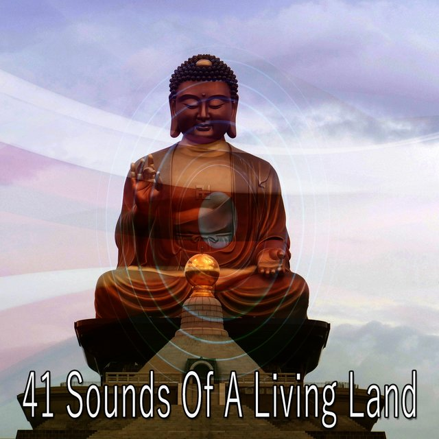 41 Sounds of a Living Land