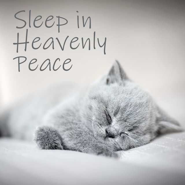 Sleep in Heavenly Peace: Nature Background Music to Help You Fall Asleep Quickly and Easily