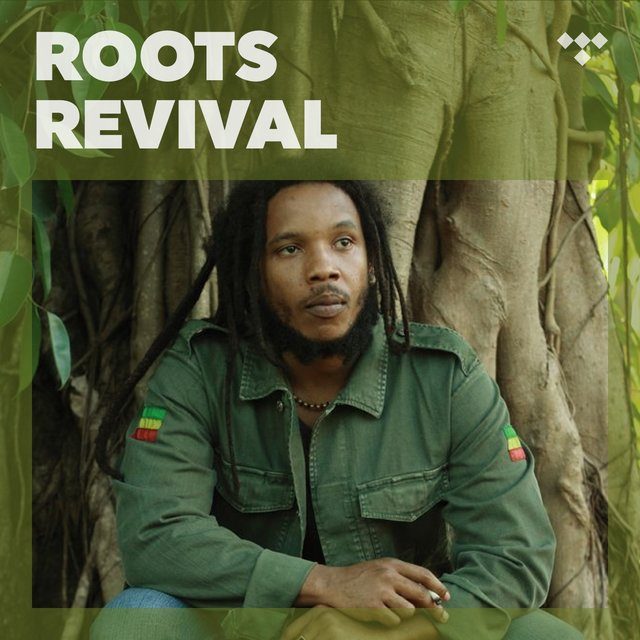 Cover art for album Roots Revival by TIDAL