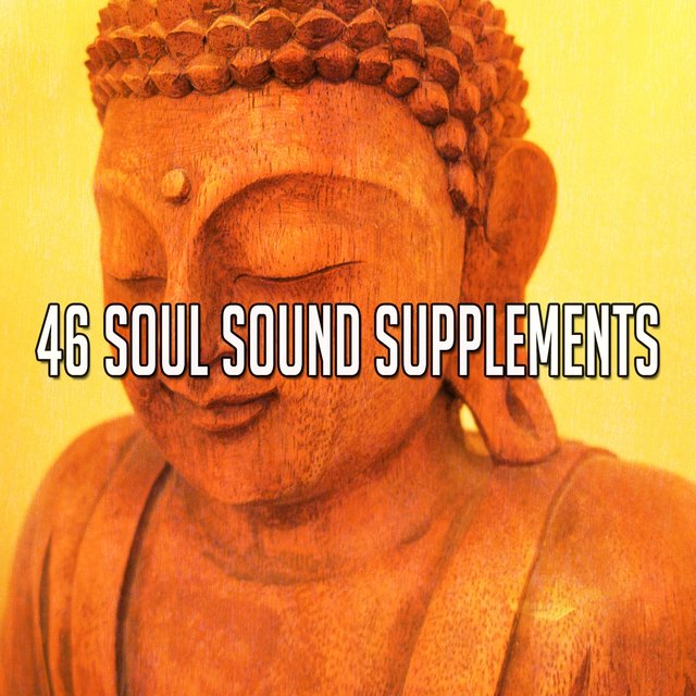46 Soul Sound Supplements