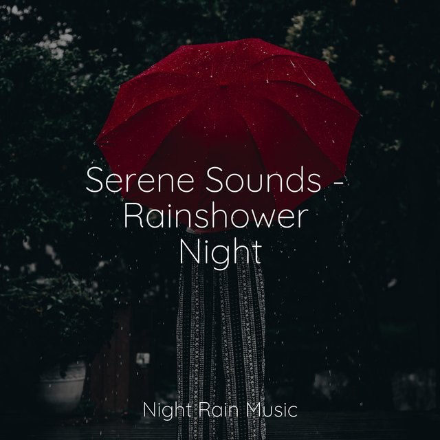Serene Sounds - Rainshower Night