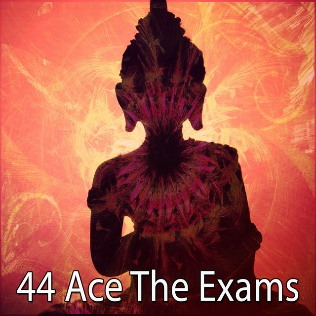 44 Ace the Exams