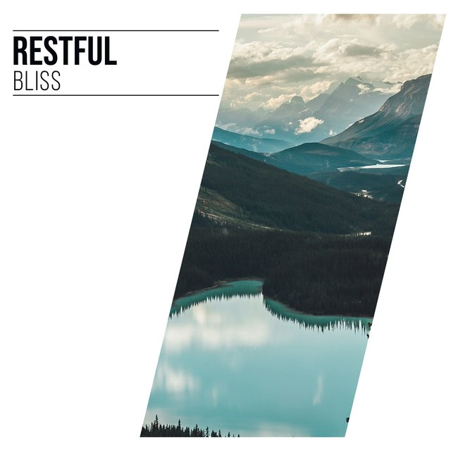 # Restful Bliss