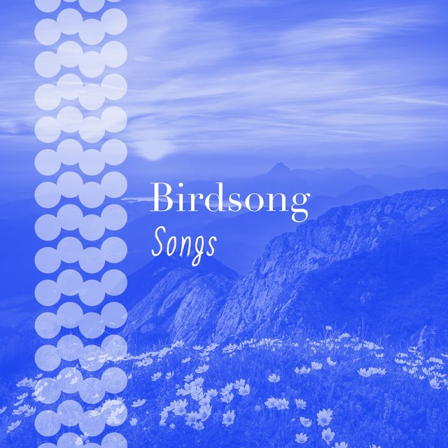 """ Flowing Natural Birdsong Songs """