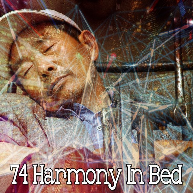 74 Harmony in Bed