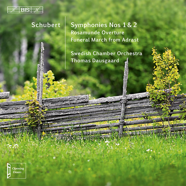 Schubert: Orchestral Works