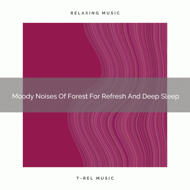 2021 New: Moody Noises Of Forest For Refresh And Deep Sleep