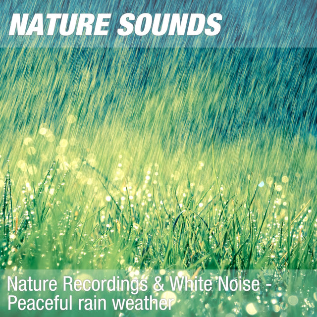 Nature Recordings & White Noise - Peaceful rain weather