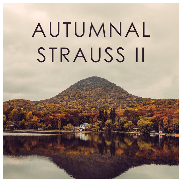 Autumnal Strauss II