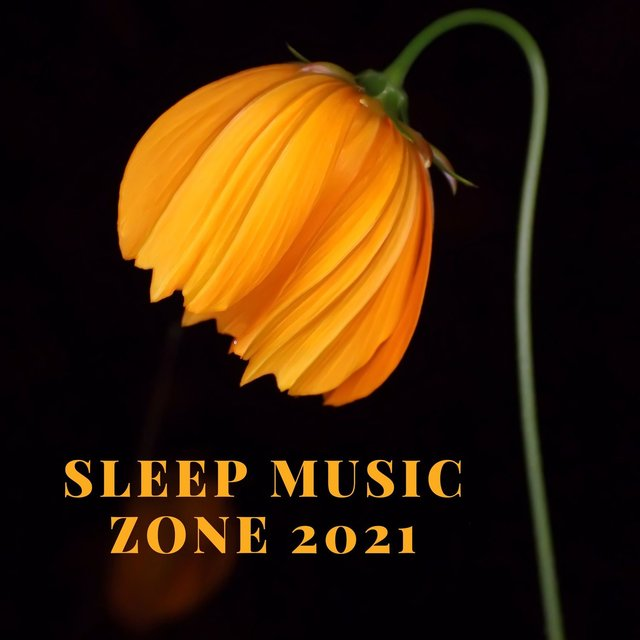 Sleep Music Zone 2021