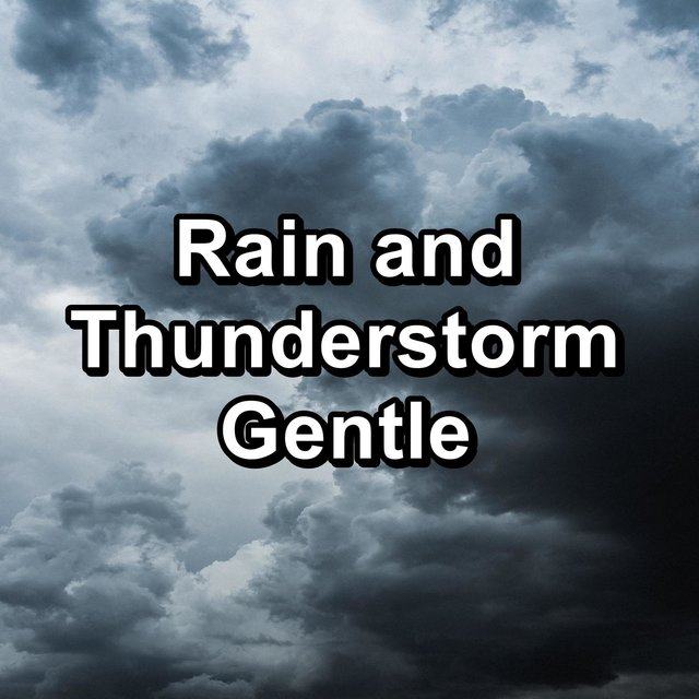 Rain and Thunderstorm Gentle