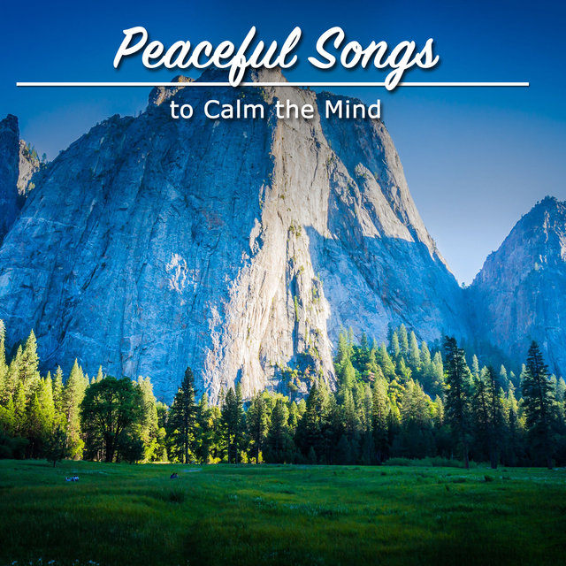 #21 Peaceful Songs to Calm the Mind