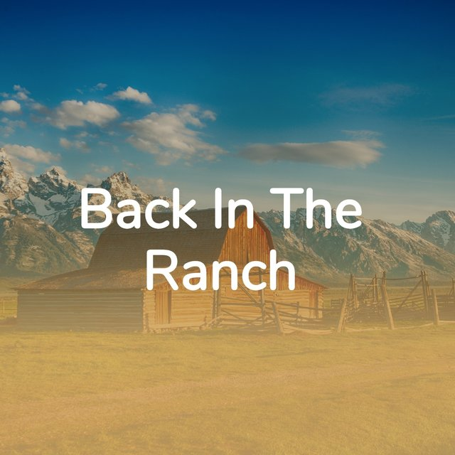 Back In the Ranch