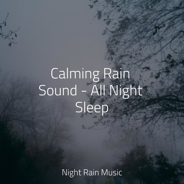 Calming Rain Sound - All Night Sleep