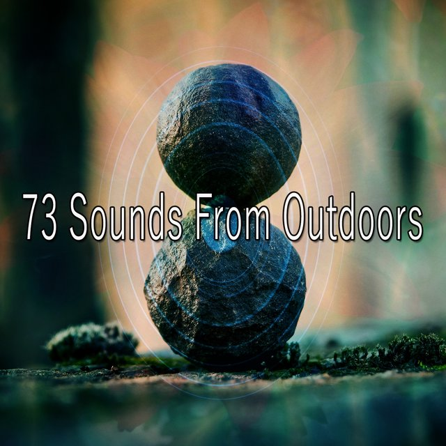 73 Sounds from Outdoors