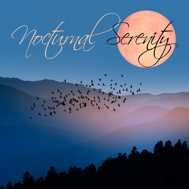 Nocturnal Serenity – Slow and Calm Chill Out Music, Night Session, Soothing Relaxation, Chillax