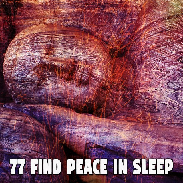 77 Find Peace in Sleep