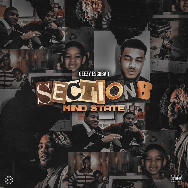Section 8 Mind State