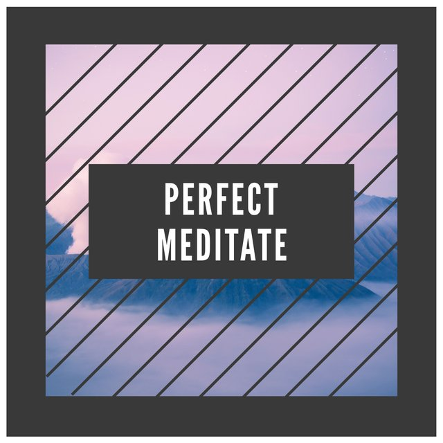 # Perfect Meditate