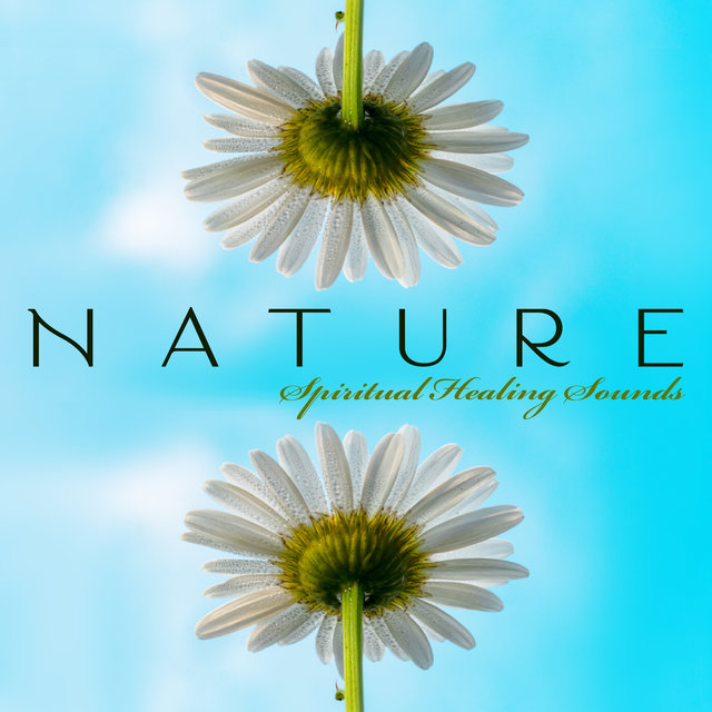 Nature Spiritual Healing Sounds: Ambient Nature and Celtic Melodies for Relaxation, Rest, Soothe, Calm Down, Regain Harmony in You, Fresh Music Compilation 2020