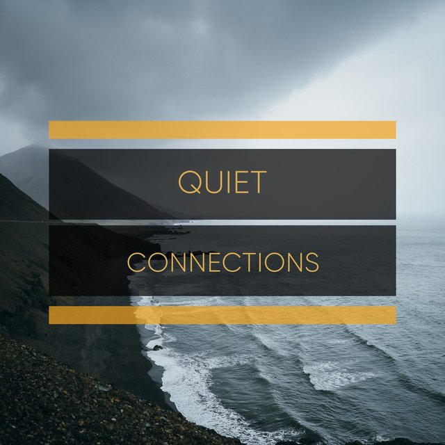 # 1 Album: Quiet Connections