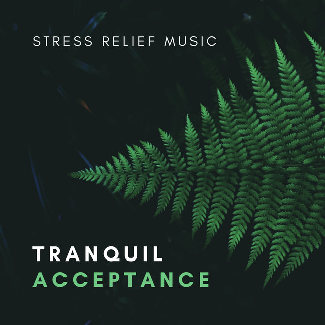 Tranquil Acceptance – Calming Sound Bath for Stress Relief. Sensual Exotic Spa