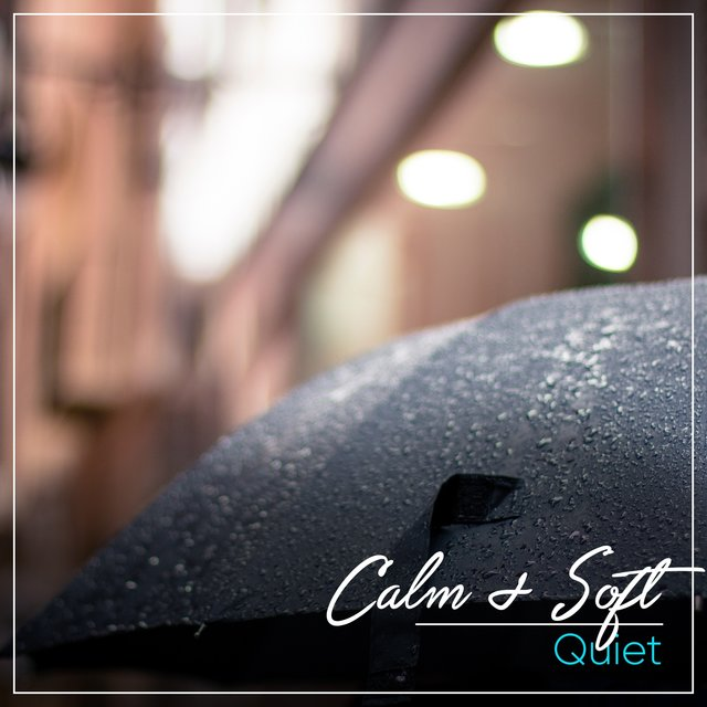 # 1 Album: Calm & Soft Quiet
