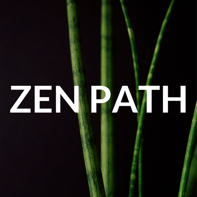 Zen Path: Chinese Meditation Music, Spiritual Path (Mindfulness Meditation)