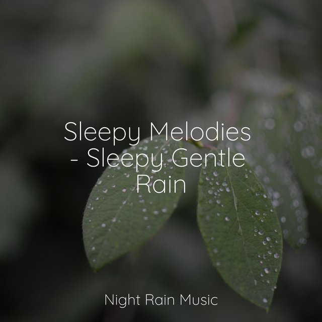 Sleepy Melodies - Sleepy Gentle Rain
