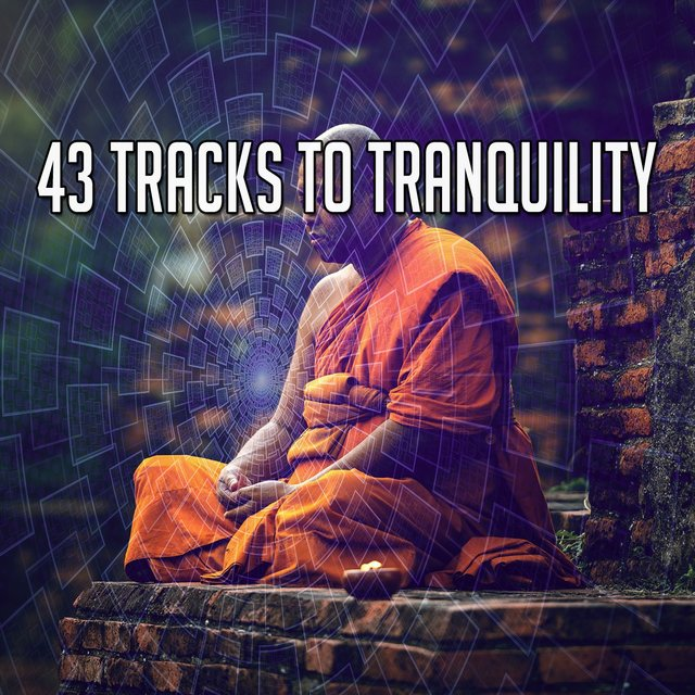 43 Tracks to Tranquility