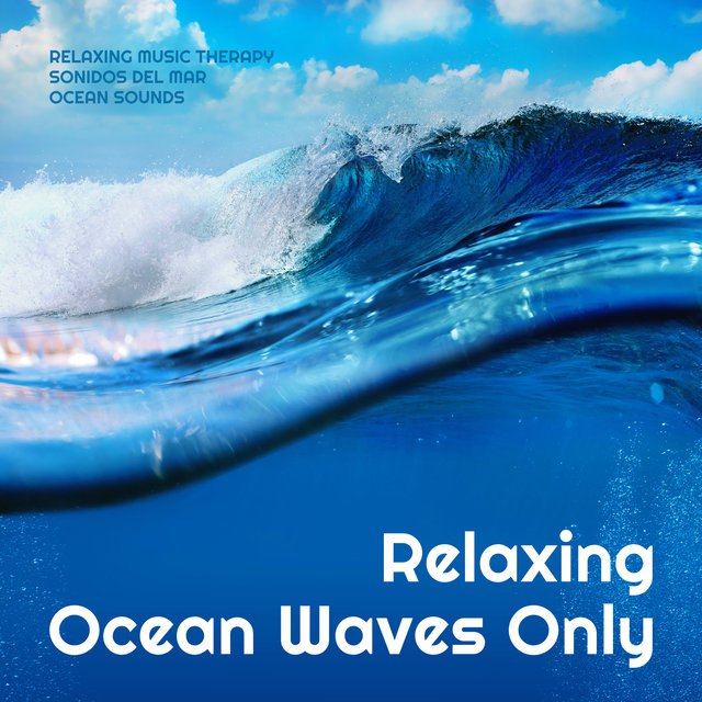 Relaxing Ocean Waves Only