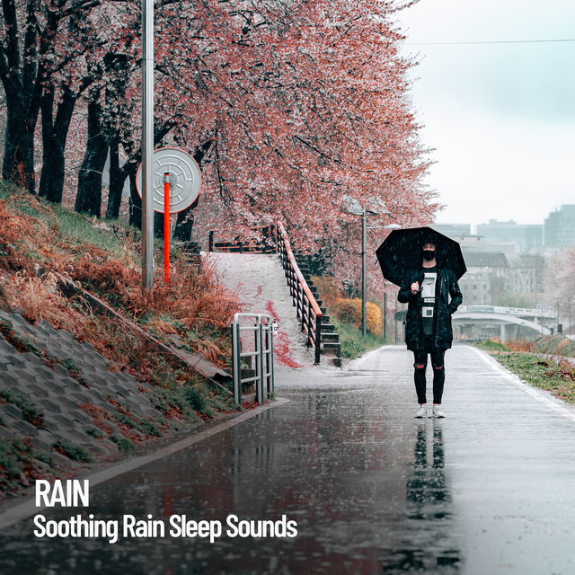 Rain: Soothing Rain Sleep Sounds
