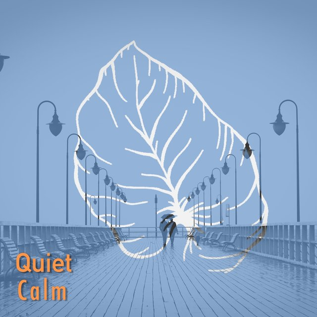 # 1 Album: Quiet Calm