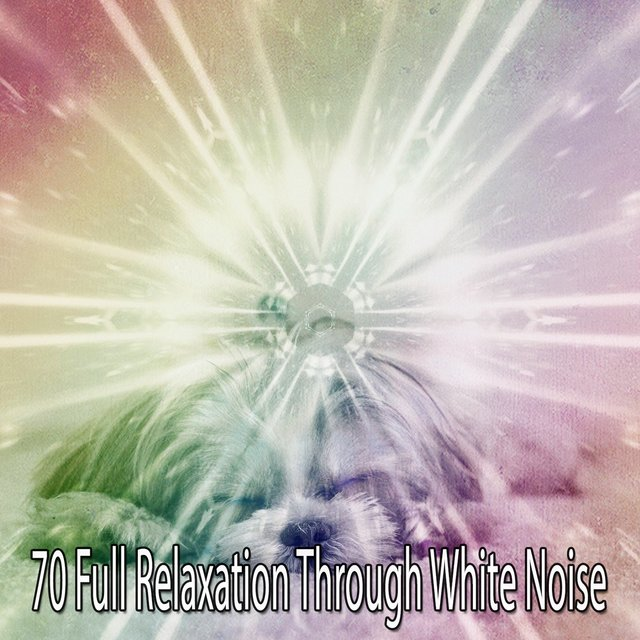 70 Full Relaxation Through White Noise