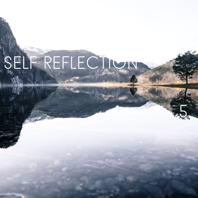 Self Reflection, Vol. 5