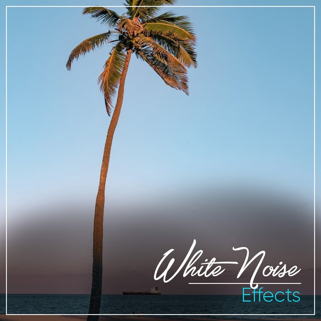 # White Noise Effects