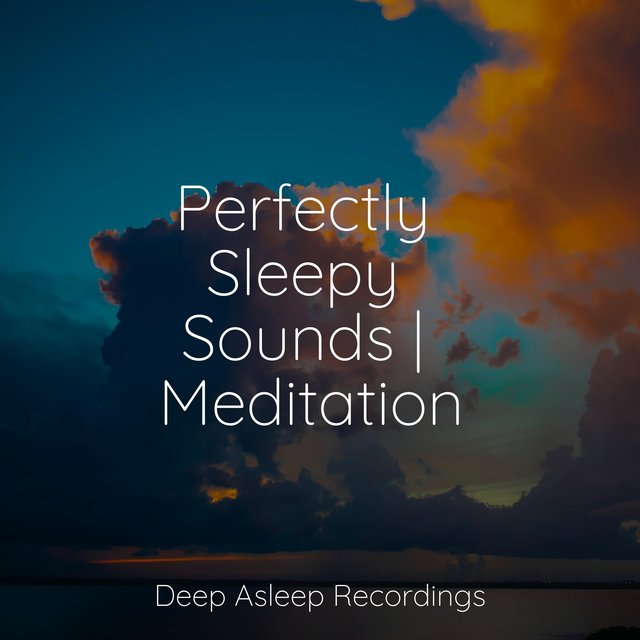 Perfectly Sleepy Sounds | Meditation