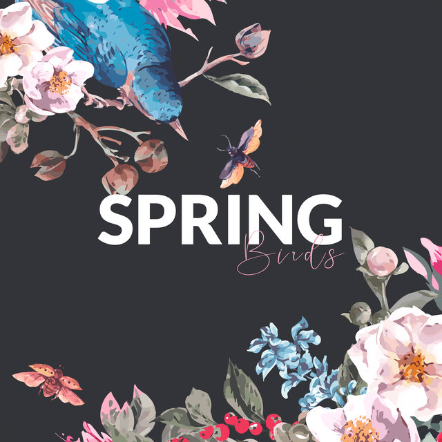 Spring Birds - Collection of Relaxing Avian Music (Spring 2020)