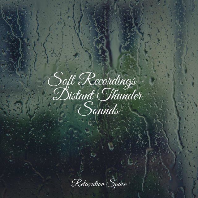 Soft Recordings - Distant Thunder Sounds