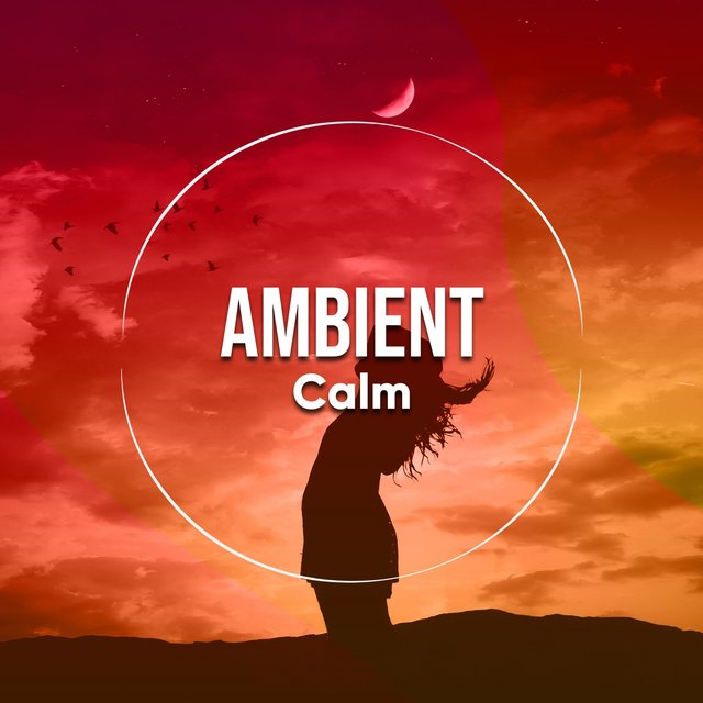 Ambient Calm