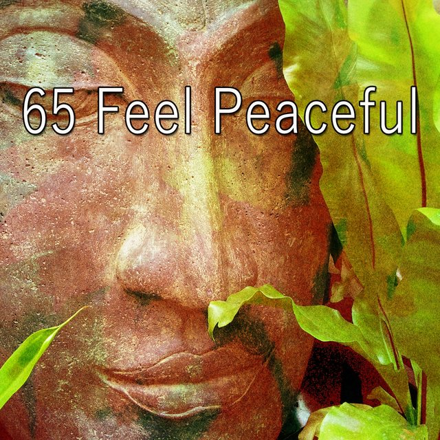 65 Feel Peaceful