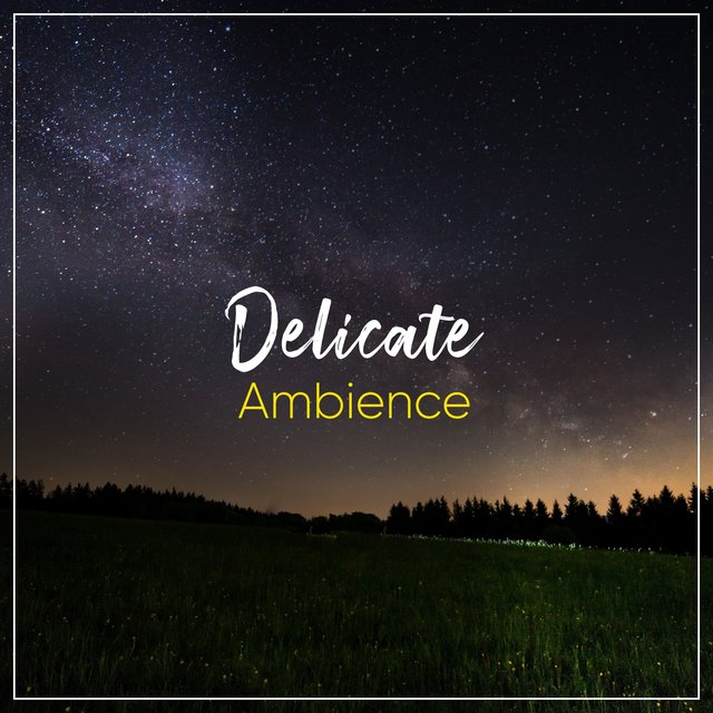 # Delicate Ambience
