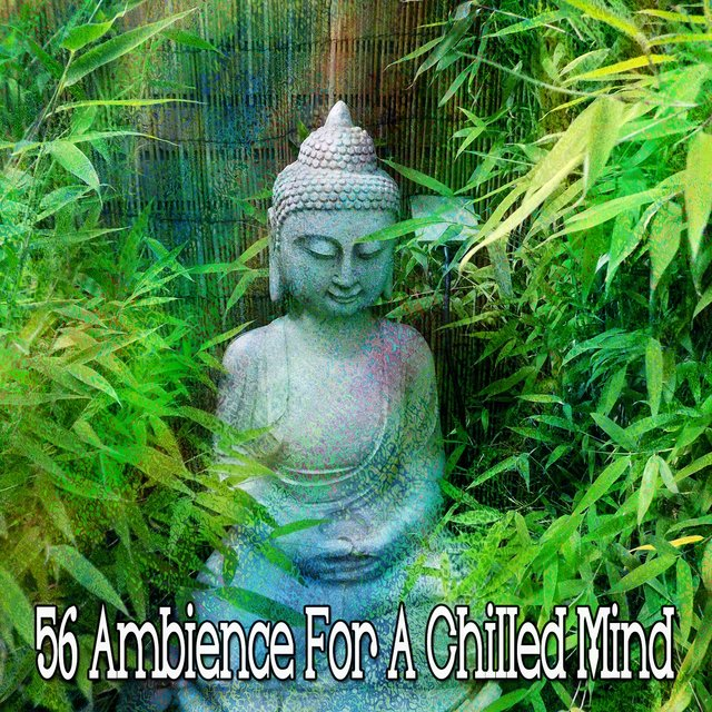 56 Ambience for a Chilled Mind