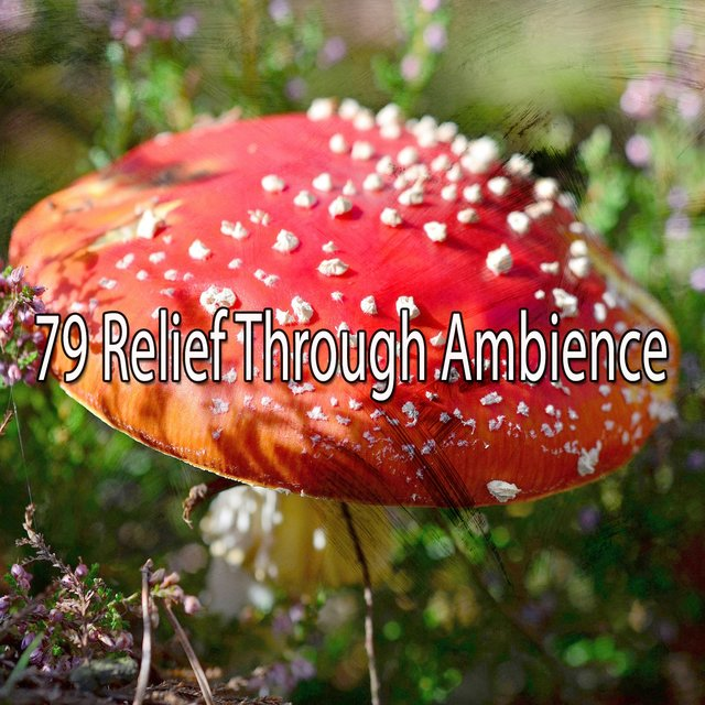 79 Relief Through Ambience