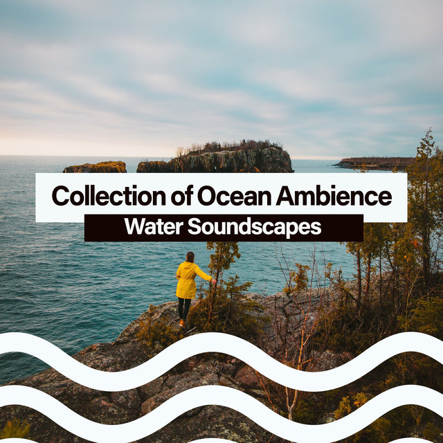 Collection of Ocean Ambience