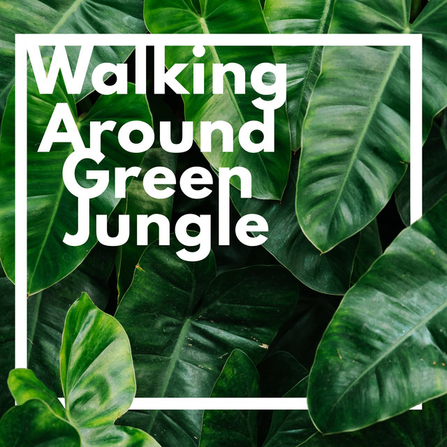 Walking Around Green Jungle – 15 Soundscapes Perfect for Total Relaxation, Healing Nature, Zen, Forest, Birds, Calm Water