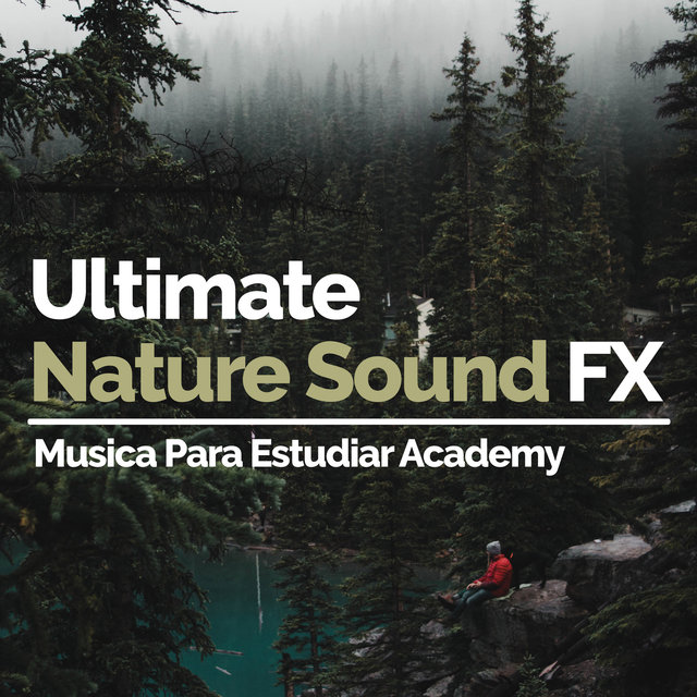 Ultimate Nature Sound FX