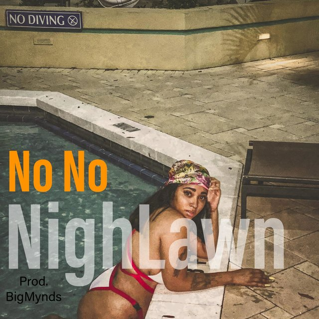 Cover art for album  by NighLawn