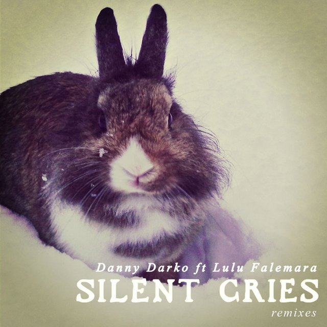 Silent Cries Remixes